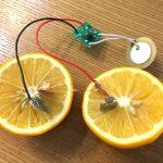 レモン電池の実験 夏休みの自由研究(小2)